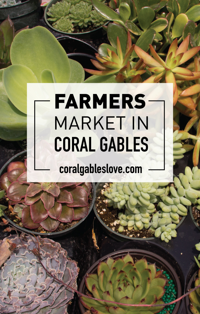 Coral Gables Farmers market. Best things to do in Miami.