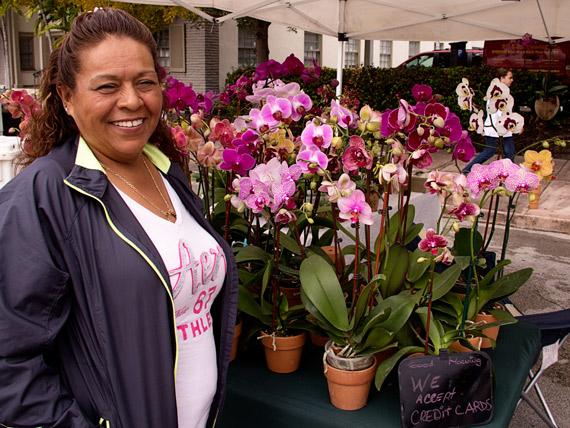 monica-orchids