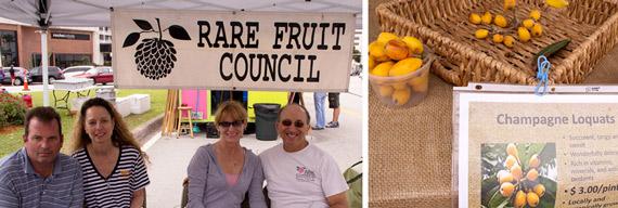 rare-fruit-counsel-miami2