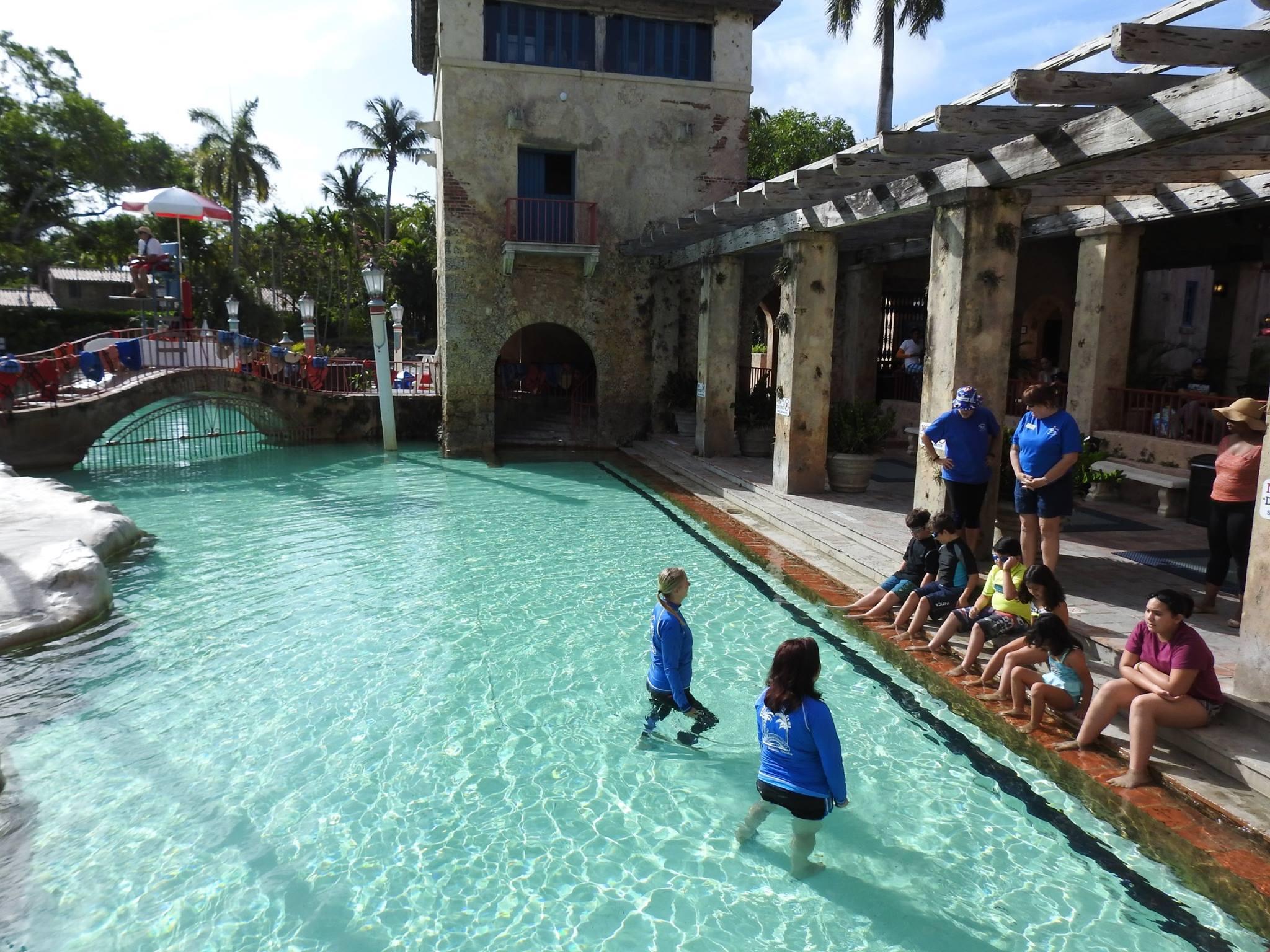Venetial Aquatic Club Summer Swimming Lessons