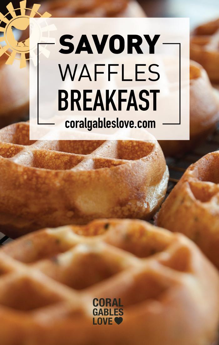 Spring Chicken Breakfast menu savory waffles. Miami restaurant.