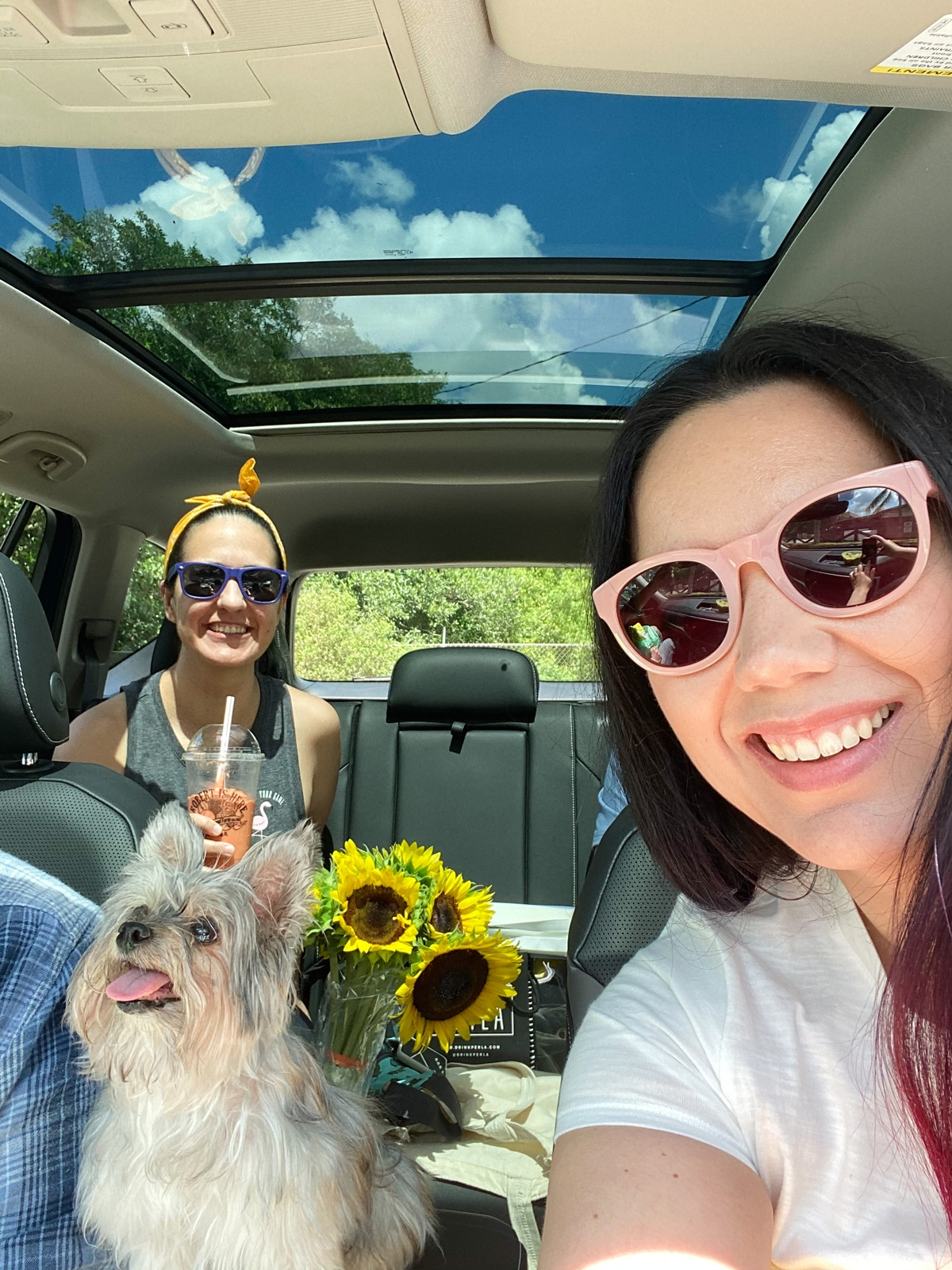 Fun Things To Do in Homestead, Florida - Have a car picnic at Robert Is Here fruit stand