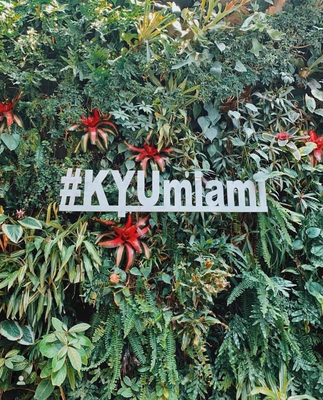 KYU Best Brunch in Wyndwood Miami
